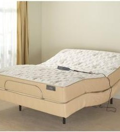 Pro-Motion Adjustable Bed & Mattress 1